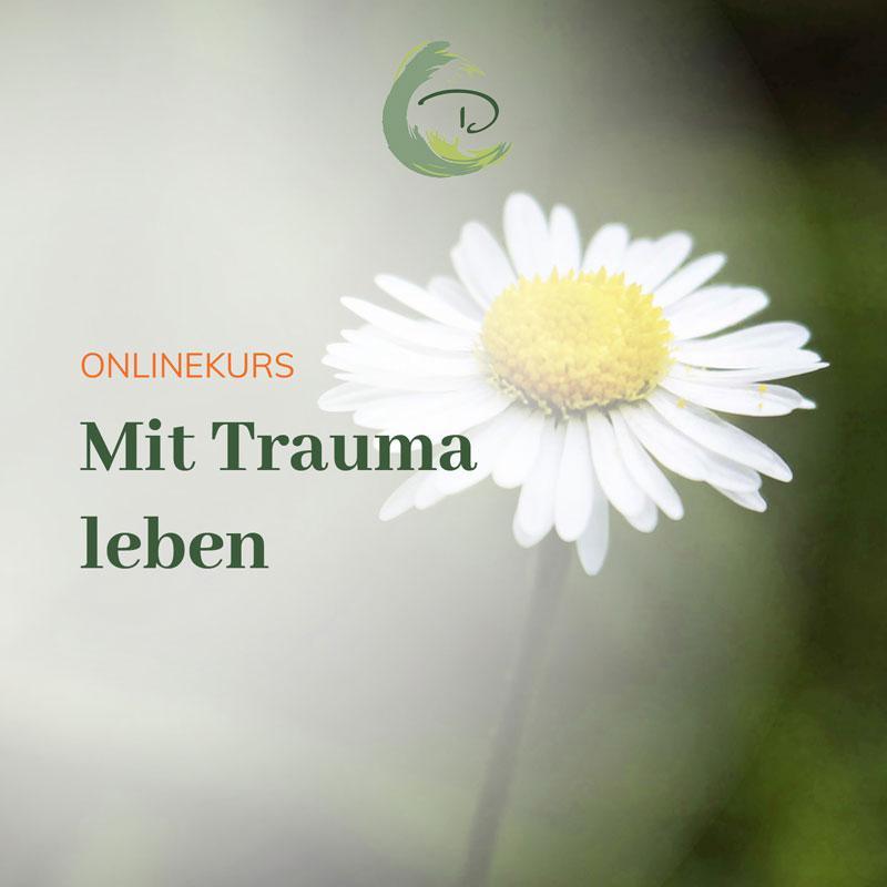"""Ab dem 26. September startet mein kostenfreier Schnupperkurs zu """"Mit Trauma leben"""""""